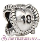 Wholesale European Sterling Silver Message Bead Birthday Milestones 18 Charm