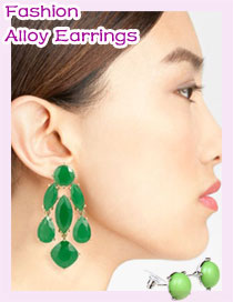 Fashion Alloy Earrings
